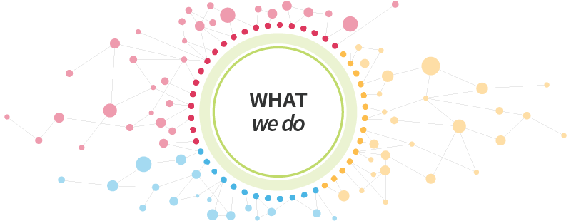 What We Do header graphic