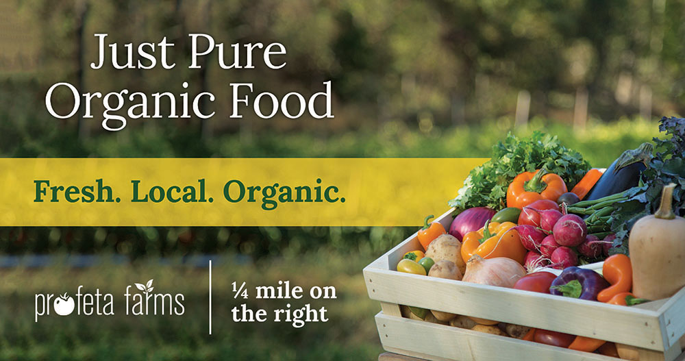 Just Pure Organic Food