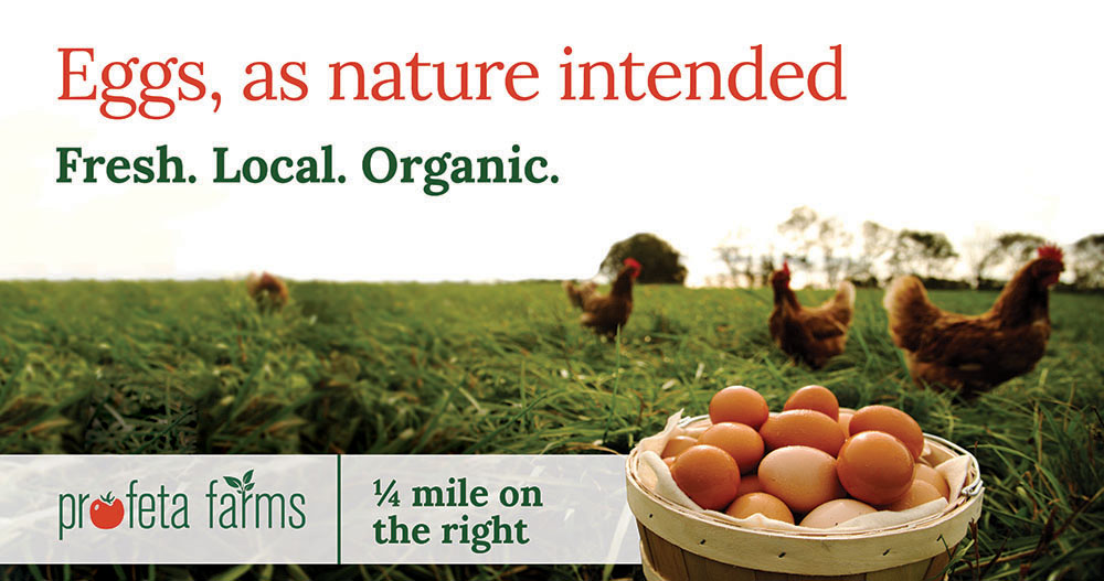 Eggs, as Nature Intended